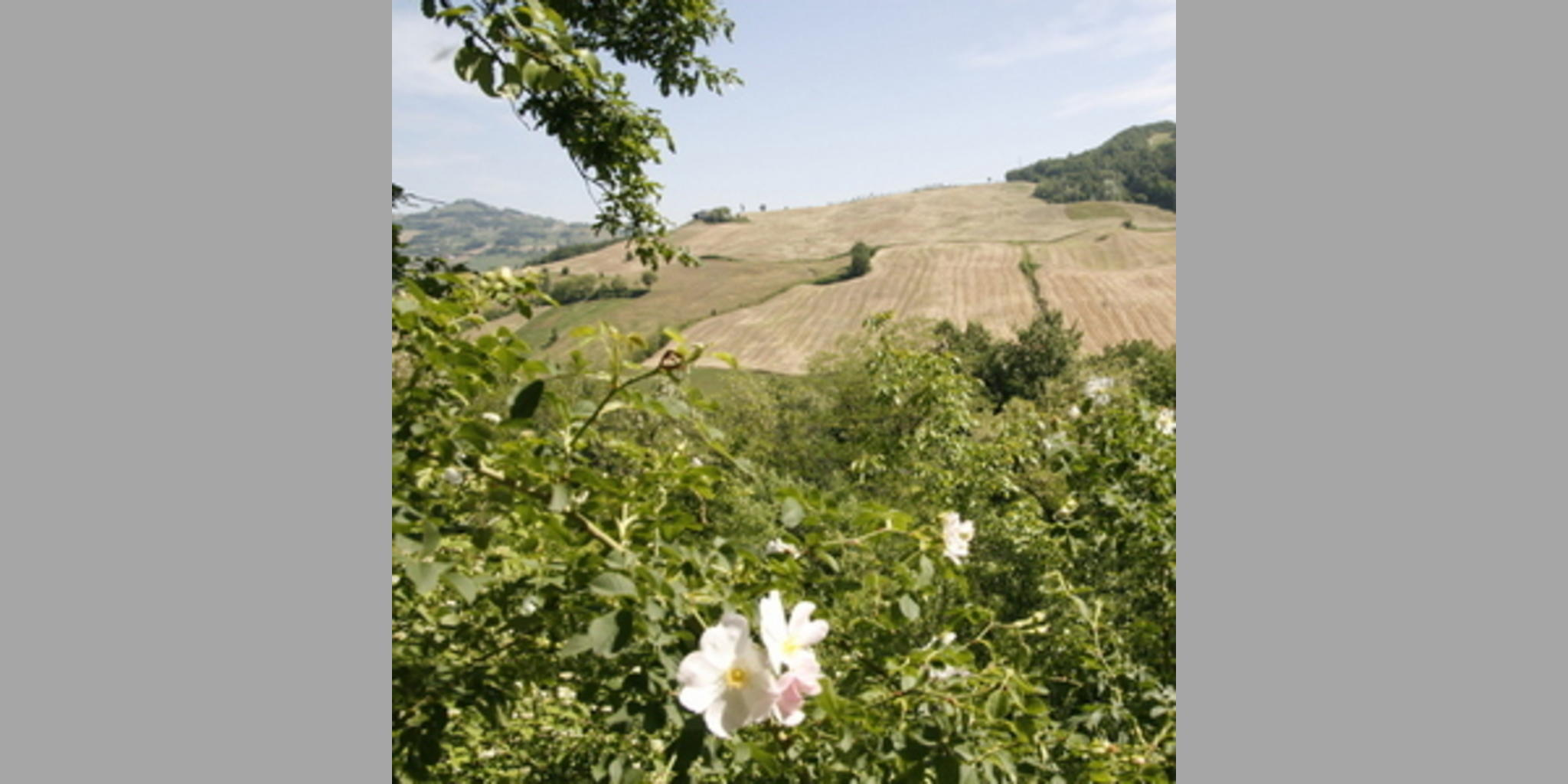 Bed & Breakfast Pecorara - Piacenza  Pecorara