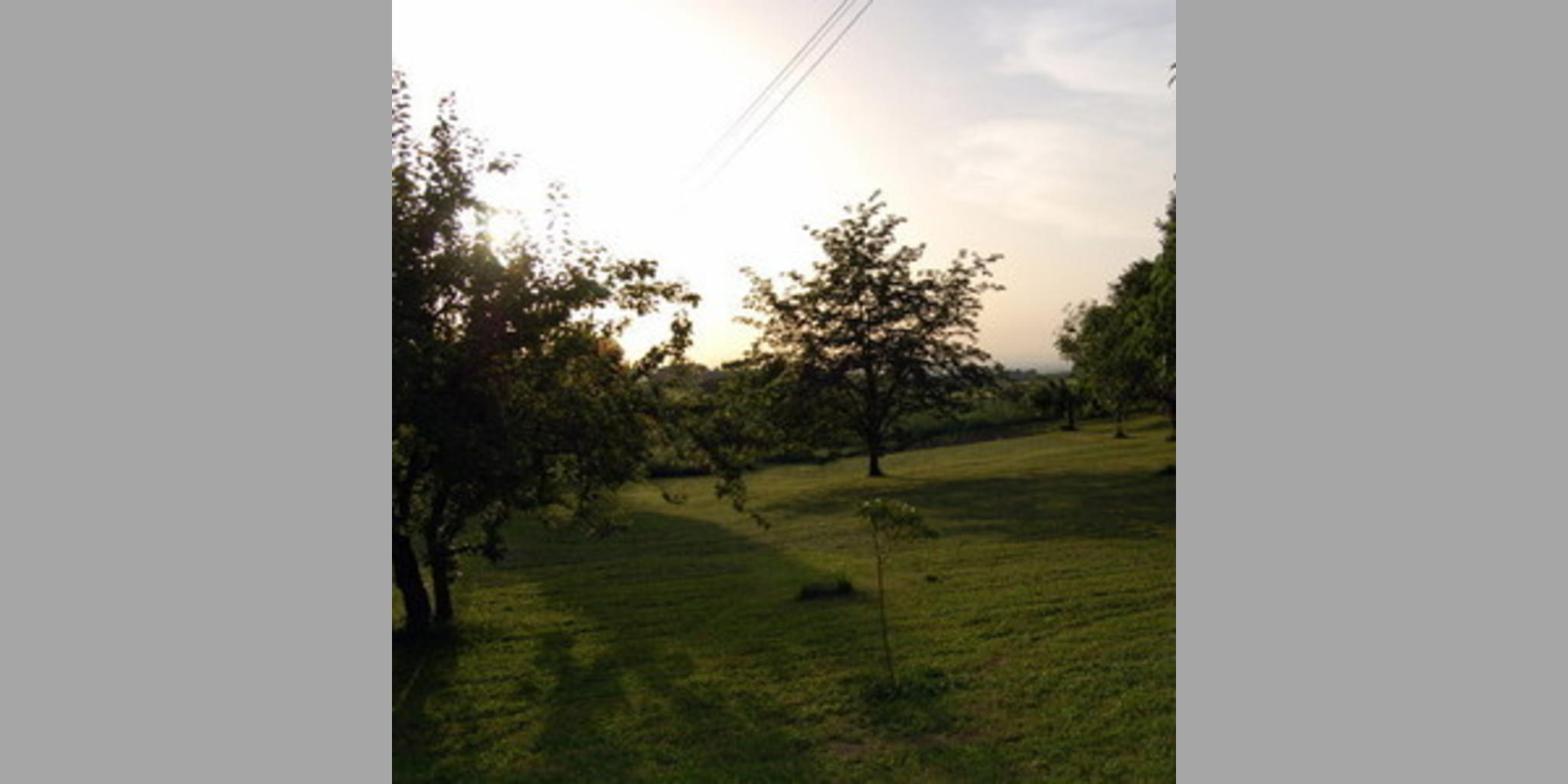 Bed & Breakfast Frascati - Castelli Romani