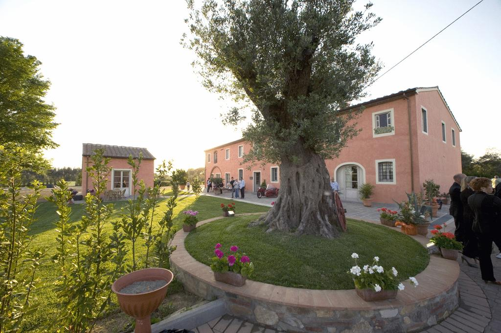 Bed & Breakfast Altopascio - Casolare