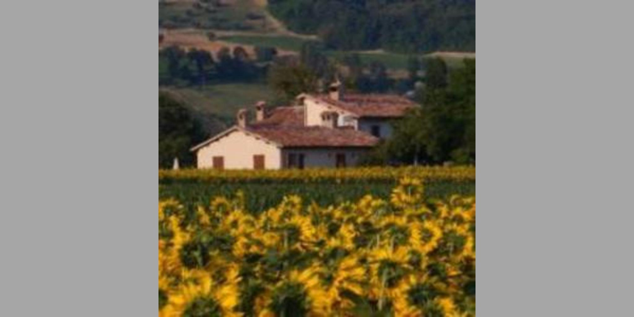 Bed & Breakfast Gubbio - Gubbio  Del Vivaio