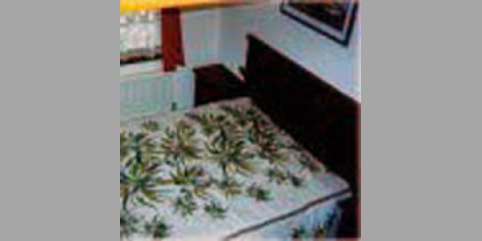 Bed & Breakfast Trebaseleghe - Ramo S. Ambrogio