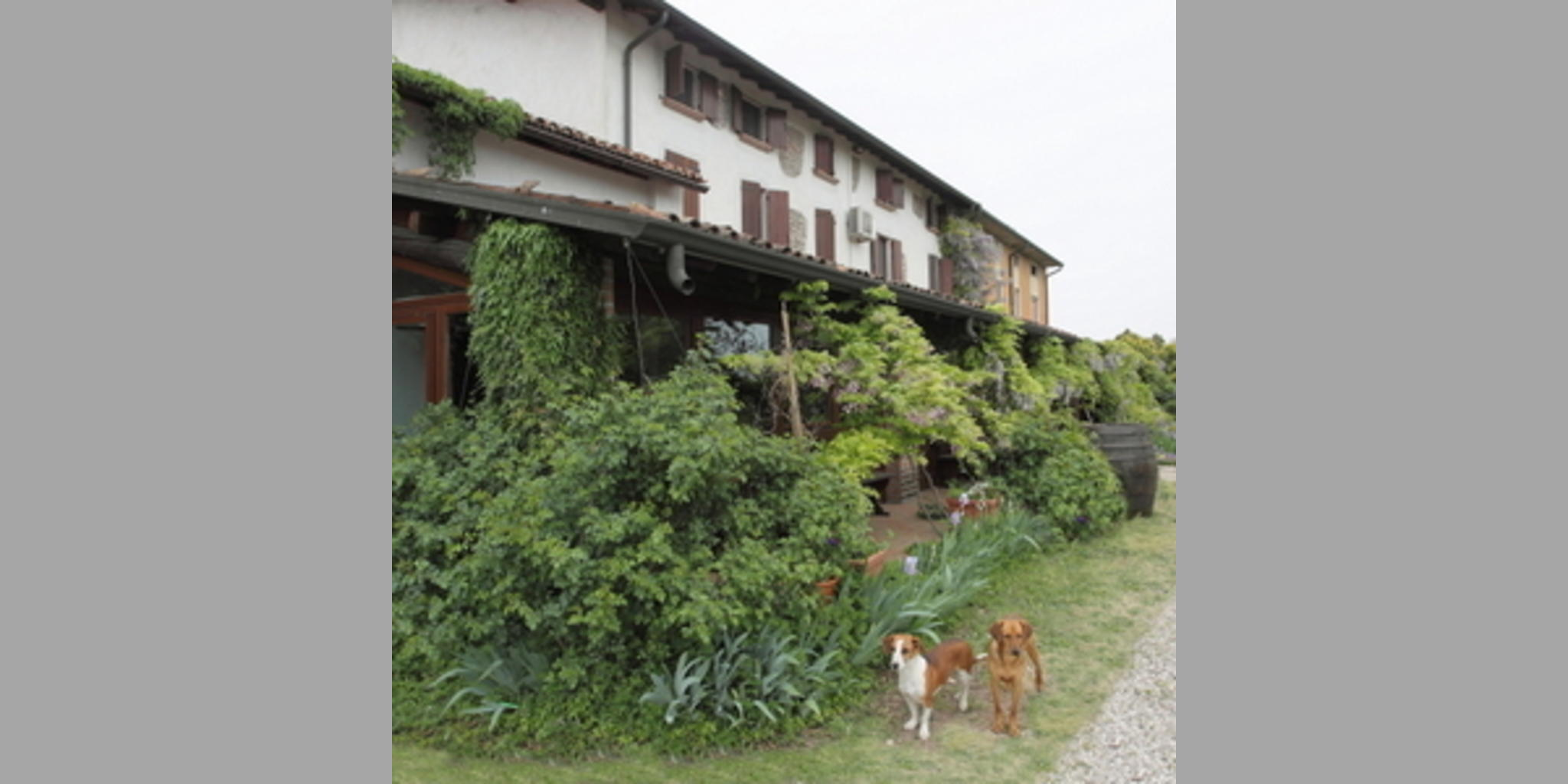 Agriturismo Valeggio Sul Mincio - Lago Di Garda_I