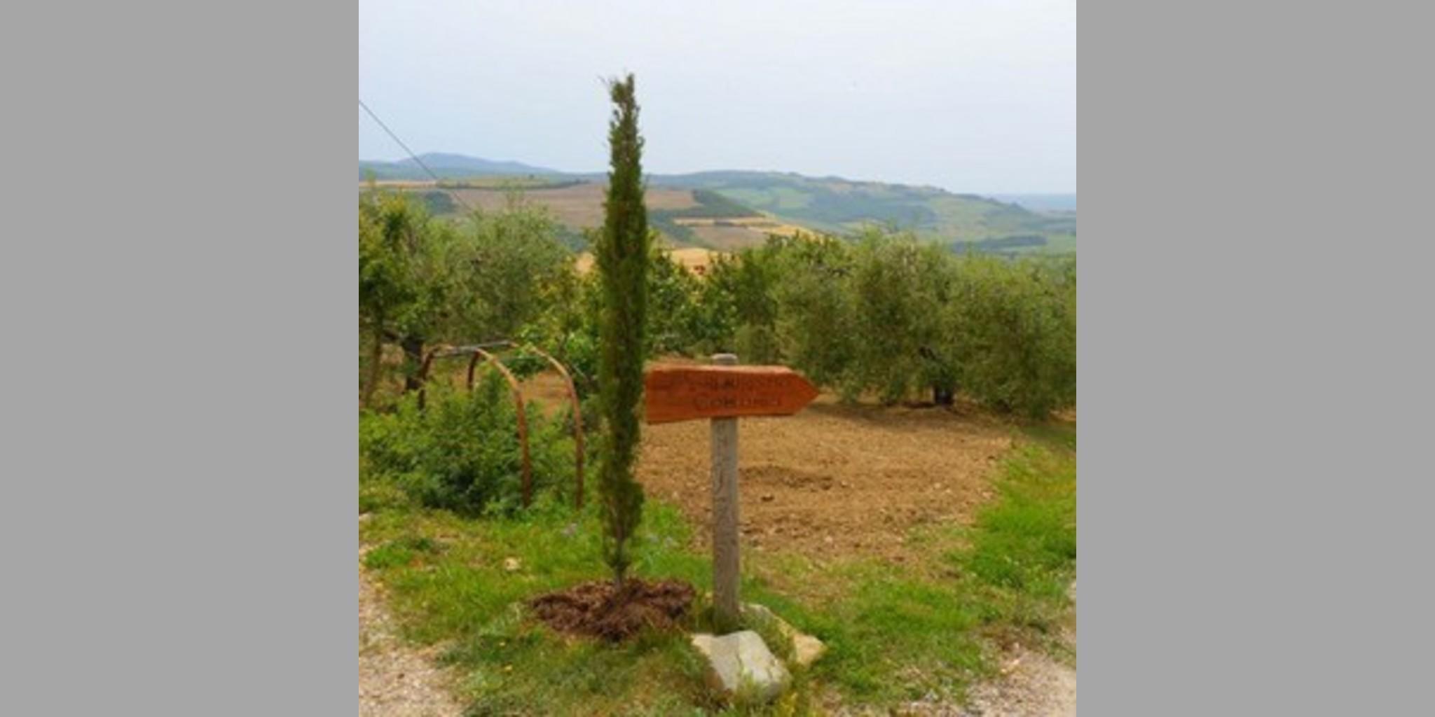 Farmhouse San Casciano Dei Bagni - Siena  San Casciano