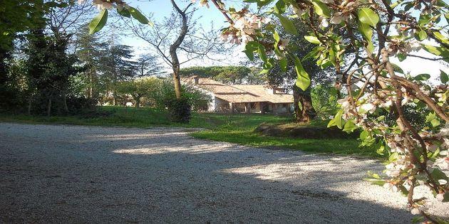 Appartamento Cinto Euganeo - Parco Regionale Colli Euganei