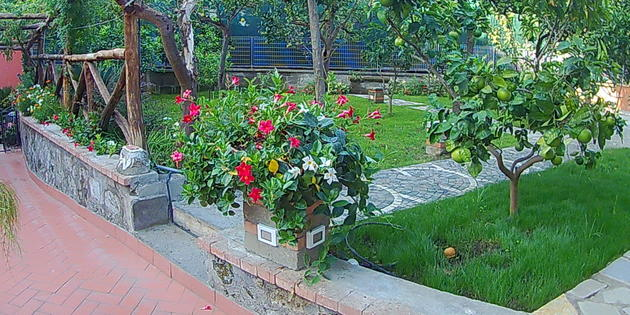 Bed & Breakfast Sorrento - Sorrento_Costiera Amalfitana