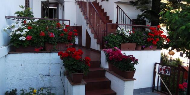 Appartement Piedimonte Etneo - San Gerardo