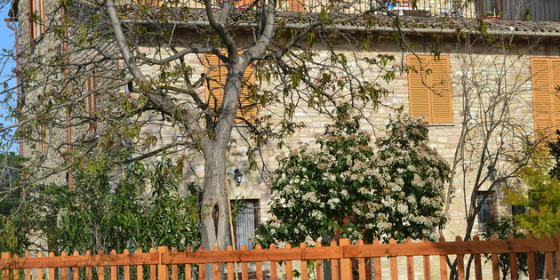 Guest House Assisi - Camere I Monelli