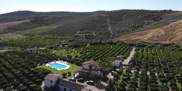 Casa Rural San Demetrio Corone - Azienda Agricola Con Piscina