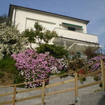 Bed & Breakfast Sestri Levante - Santa Vittoria