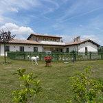 Bed & Breakfast Assisi - Petrignano