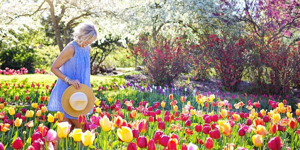 Best events of 2019 about tulips in Italy